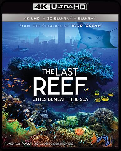 The Last Reef: Cities Beneath The Sea
