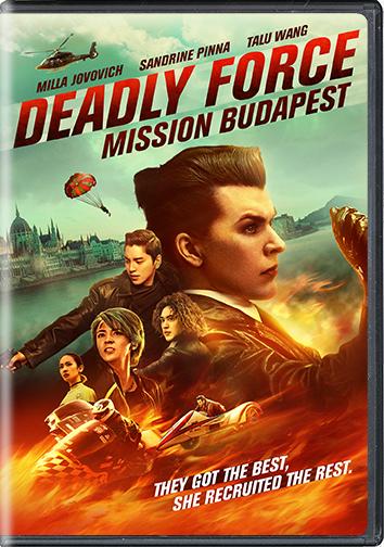 DFMB_DVD_Cover_72dpi.png