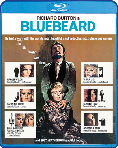Bluebeard1972_BR_Cover_72dpi.png