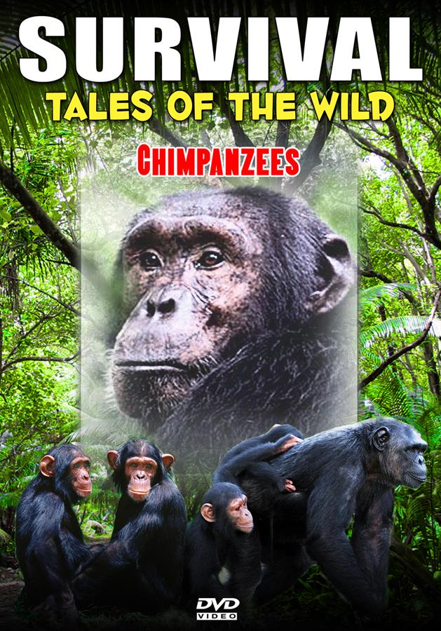 Survival: Tales Of The Wild: Chimpanzees